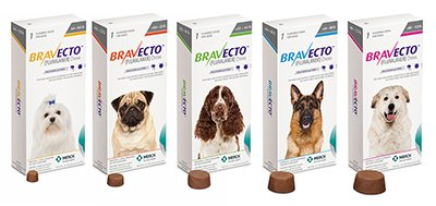 Bravecto Flea And Tick Prevention 15 Amp 35 Rebates